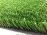 人造草坪仿真草坪丨河北草坪厂家全国直销