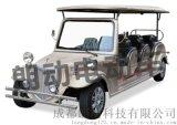 十一座電動老爺車,電動老爺車報價,成都朗動