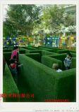 建筑装饰草坪     工地围墙草坪