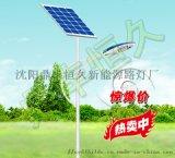 廠家供應6米8米雙臂路燈 一體化LED太陽能路燈