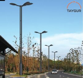 泰格LED照明灯,异形路灯杆,热镀锌路灯,道路照明