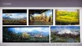 博物馆壁画手绘公司