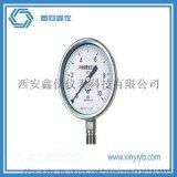 不锈钢压力表 不锈钢耐震 全304 耐腐蚀 高温