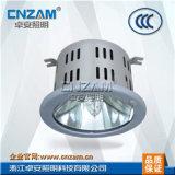 高效顶灯顶灯(NFC9110)高效顶灯
