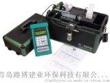KM9106便携式综合烟气分析仪进口