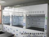 武汉LHK供应PP通风柜/通风橱  武汉实验设备厂家