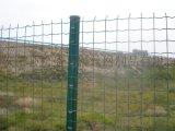 內蒙古廠家直銷 鐵絲網 防護網 養殖 圈山圍欄網 包塑荷蘭網 果園