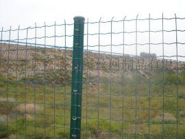 内蒙古厂家直销 铁丝网 防护网 养殖 圈山围栏网 包塑荷兰网 果园