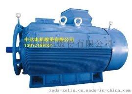 Y2紧凑型高压三相异步电动机