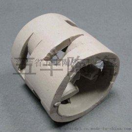 专业生产陶瓷鲍尔环