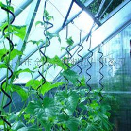 螺旋西红柿支架 镀锌番茄架 植物支架铁丝