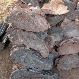 定做浮石碎拼 火山岩规格板材 红色砖蘑菇石