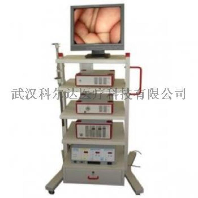 德國狼牌腹腔鏡,進口宮腹腔鏡檢查系統