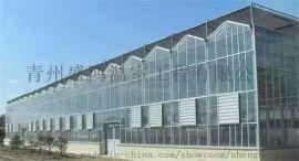 山西吕梁尖顶玻璃温室大棚,盛鸿建设
