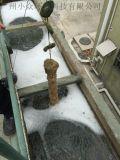 工业废水专用菌种
