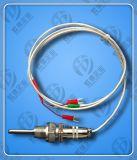 WZPQ2-E32汽轮机用埋入式热电阻虹德测控供应