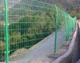 綠色鐵絲網@蘇州綠色鐵絲網@綠色鐵絲網廠家直營