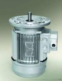 上海德東YS8024B5 0.75KW鋁殼小功率