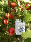 果树叶面肥该如何使用?