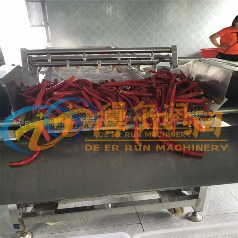多功能蔬菜清洗机 净菜加工设备 气泡式蔬菜清洗机
