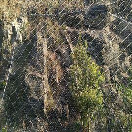 山体喷土绿化网-山体绿化防护网-山体喷土防护网