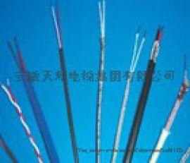 安徽天彩供应F46绝缘护套热电偶补偿导线超长型