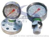 泥浆泵法兰式TYPE充油耐震压力表
