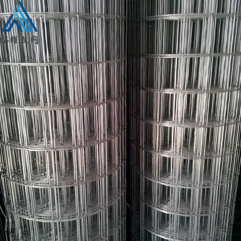 圈玉米用电焊网 镀锌电焊网