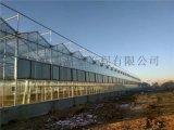 智慧玻璃溫室,玻璃溫室,玻璃大棚