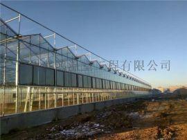 智能玻璃温室,玻璃温室,玻璃大棚