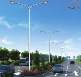 泰格照明LED,路燈杆,高杆燈,雙臂路燈,戶外路燈