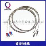 M6螺釘式熱電偶M8螺紋熱電阻溫度感測器探頭感溫線