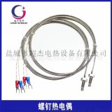 M6螺钉式热电偶M8螺纹热电阻温度传感器探头感温线