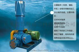 粉体输送除尘专用高压罗茨鼓风机