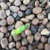 安陽8-12公分鵝卵石   永順駁岸鵝卵石供應