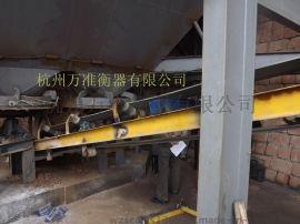 皮带秤厂家,杭州皮带秤,皮带秤价格