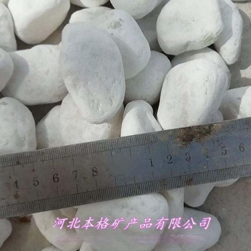 白色小石子 园艺景观铺路铺面小石头 鹅卵石 白色