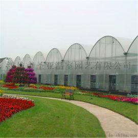 玻璃温室 阳光板温室 薄膜连栋温室 连体蔬菜大棚