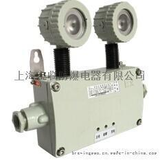 上海宝临BL-ZFZD-E6W-BAJ52消防应急照明灯具