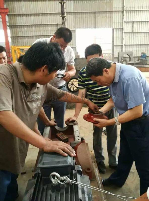 微孔曝氣增氧三葉羅茨鼓風機 百脈機械 品質可靠 經濟耐用
