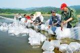 农丰虾王小龙虾养殖品牌或成投资热门