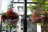 立體綠化容器 杭州燈杆花盆 懸掛式