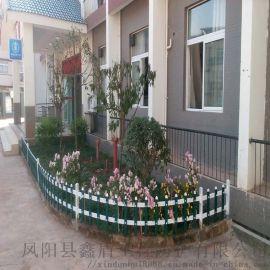 河南商丘pvc护栏厂家 绿化围栏 园林栅栏