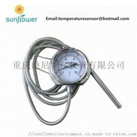 WTY 耐震温度表毛细管温度计硅油填充