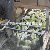 云南香葱清洗机  全自动洗葱设备 小葱仔清洗机