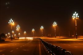 江苏扬州道路美观环保玉兰灯