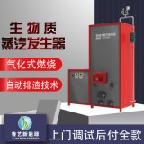 節能環保蒸汽鍋爐 生物質鍋爐蒸汽發生器
