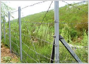 甘肃草场围栏网,草场围栏网销售点