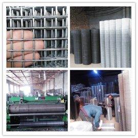 大丝宽幅电焊网,1.3公分孔大丝电焊网
