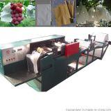 制做套葡萄纸袋加工机械葡萄袋机